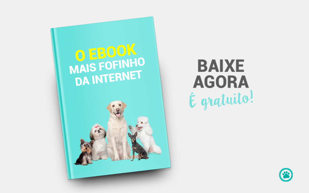 Vet Plus lança ebook sobre os cães mais amados do Brasil