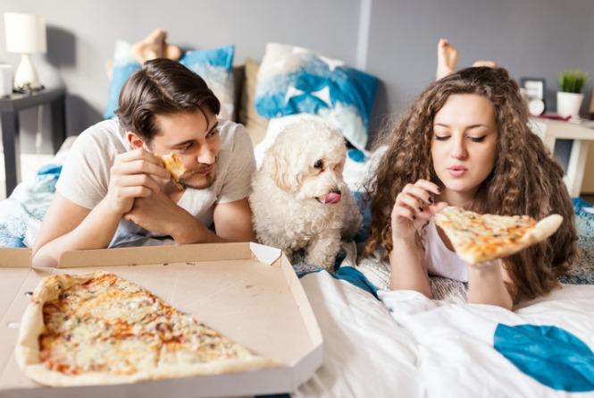 Alimentos que pets não podem comer: descubra quais são