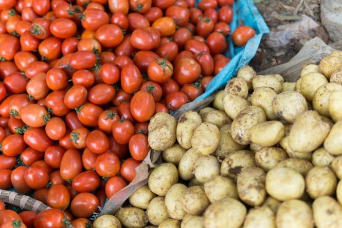 tomato-and-potato-picture-id679283498