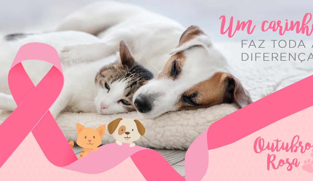 Outubro Rosa: prevenção do câncer de mama em pets