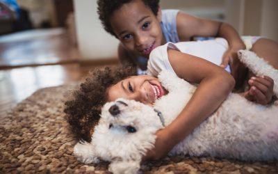 5 motivos para estimular o convívio entre crianças e animais